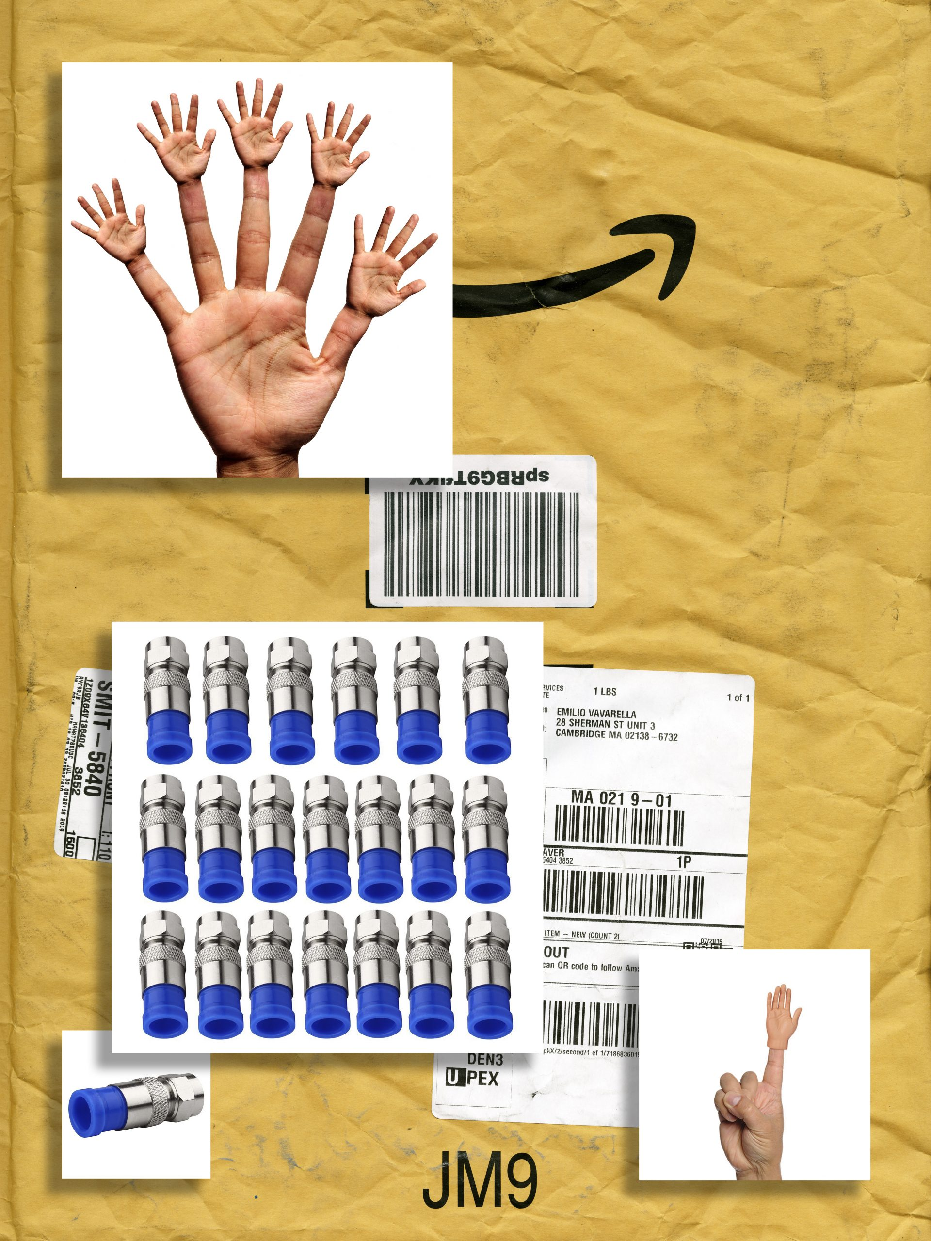 amazon rsquo s stravaganza a personal index of infinite consumption n17