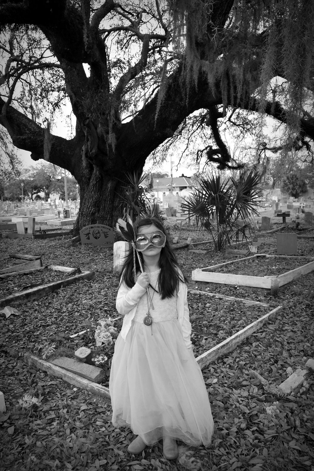at holt cemetery 1 new orleans
