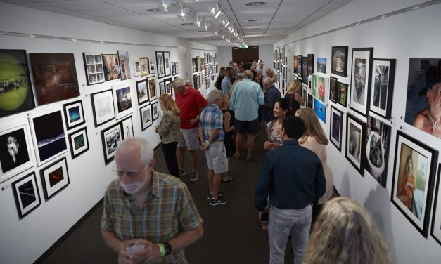Members Show Reception 2019