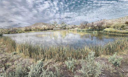 Bremner Benedict- Hidden Waters / Desert Springs / Uncertain Future